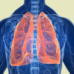 Principles of treatment of small cell lung cancer